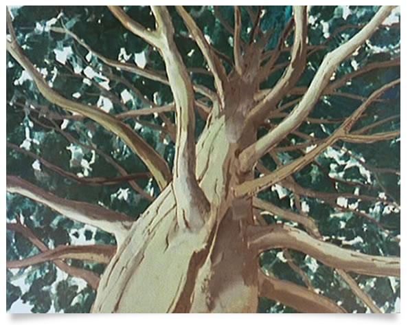 takahata_heidi_arbre