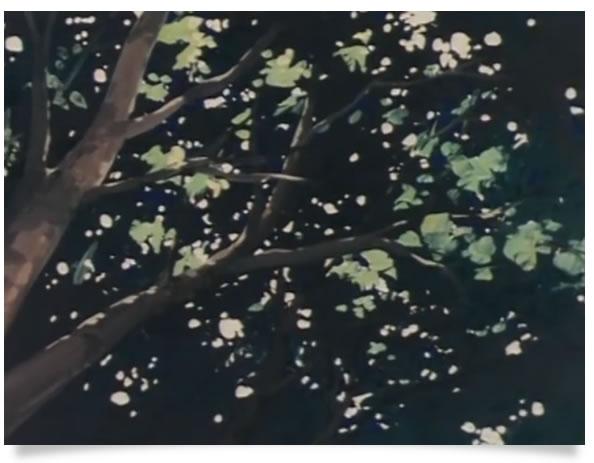 arbre_Marco_Ep24
