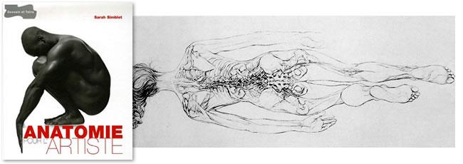 anatomie_artiste_simblet