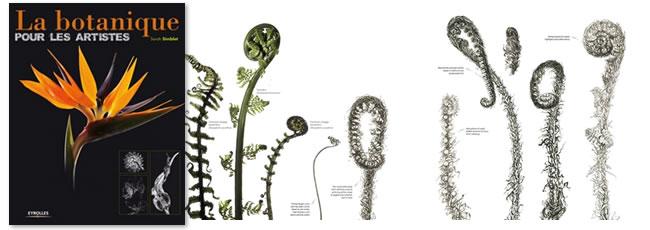 botanique_simblet