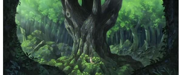 ame_yuki_coeur_forêt